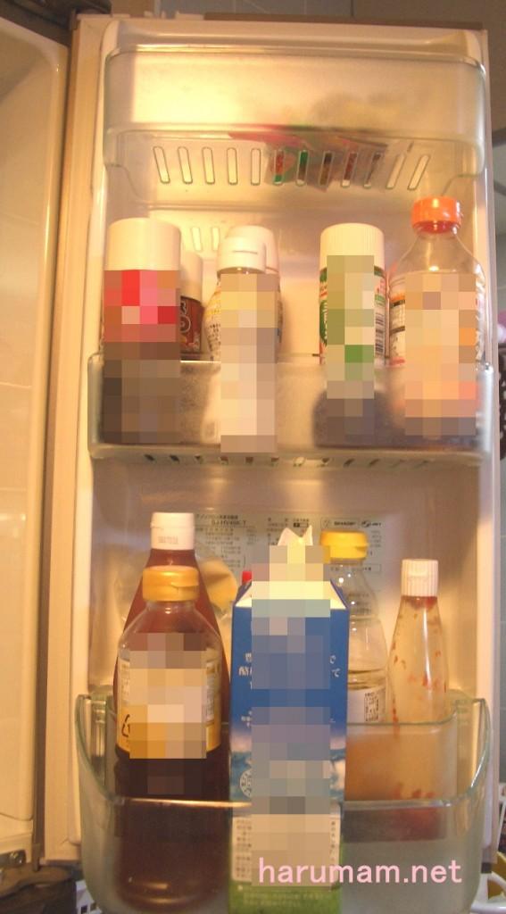 冷蔵室右 断捨離後