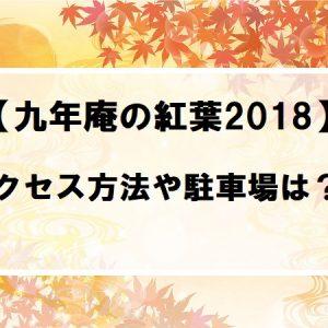 佐賀九年庵2018年の紅葉アクセス方法